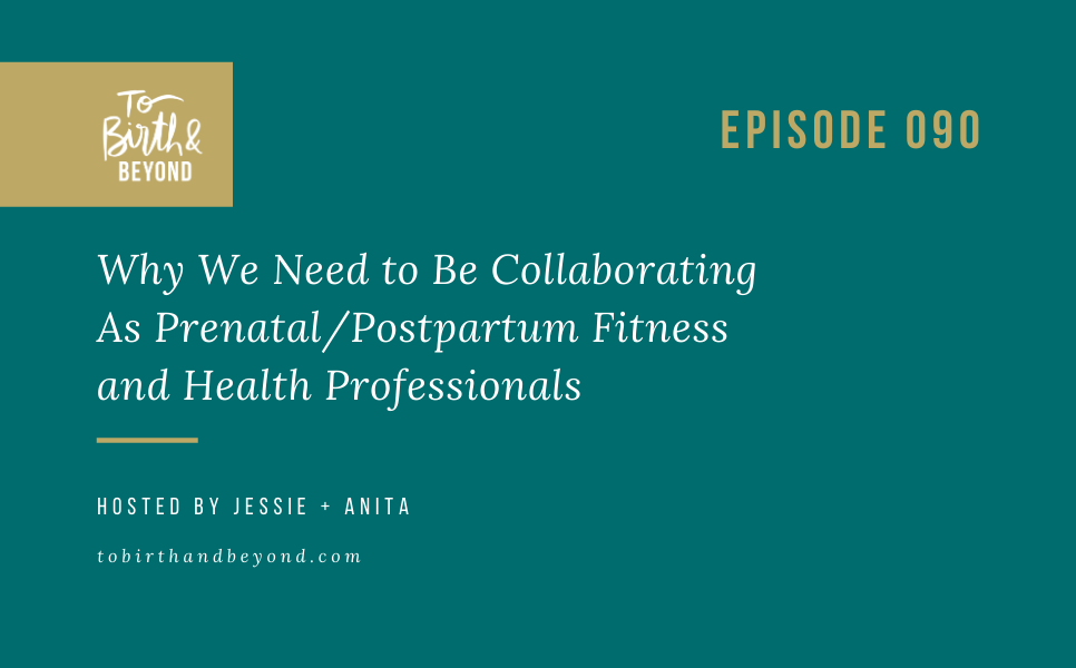 [PODCAST] Why We Need to Be Collaborating As Prenatal/Postpartum Fitness and Health Professionals